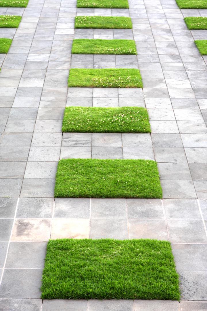 Entretien jardin le aux moines guillevic kevin for Entretien jardin ile de re